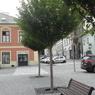 081 Václavské náměstí