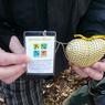 geolokační hry a mobilní aplikace