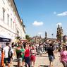 Gastrofestival